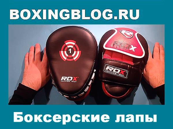 Боксерские лапы