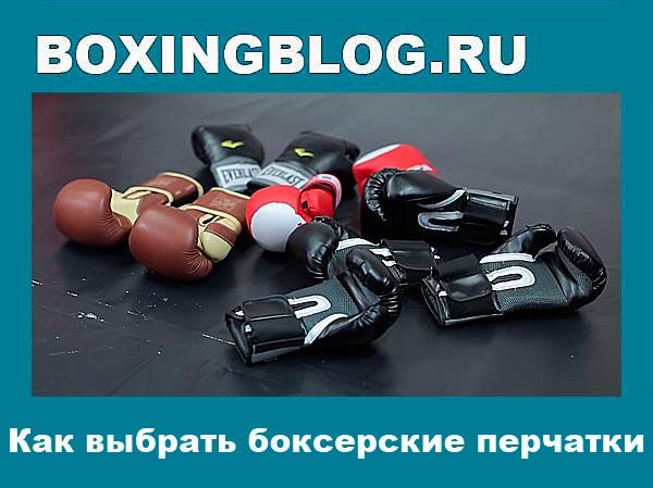 Как выбрать боксерские перчатки