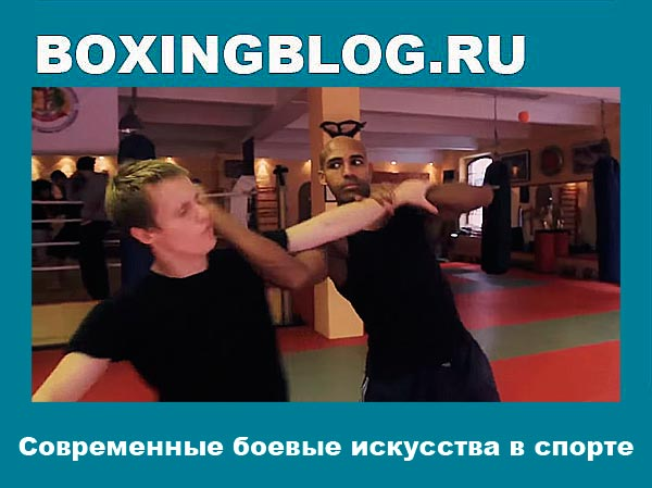 Современные боевые искусства в спорте