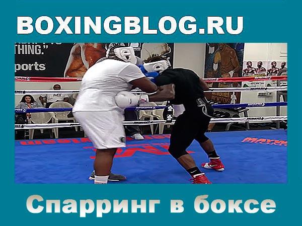 Спарринг в боксе