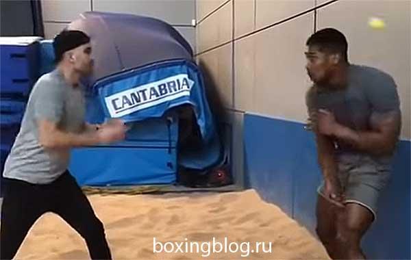 Тренировка реакции в боксе: упражнения для развития